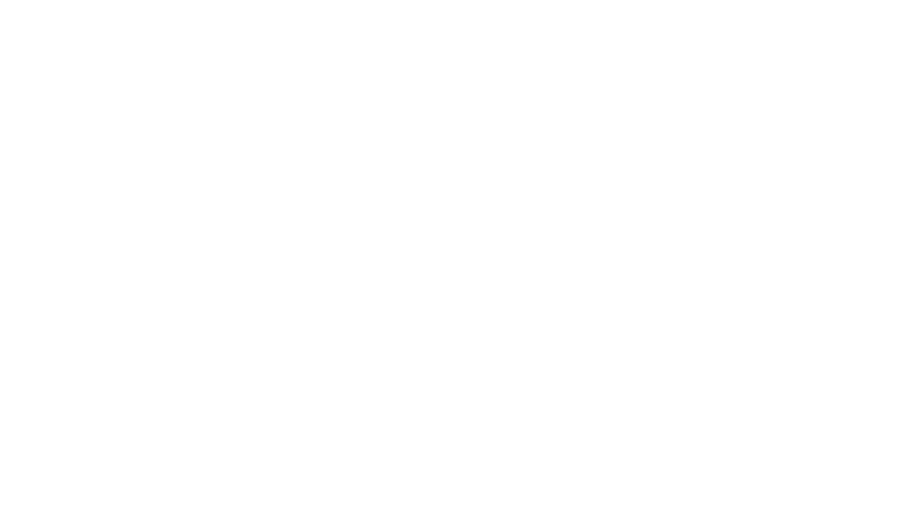 Online Dog Training by Tobias Oleynik