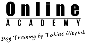 Logo IPO Onlione Academy PNG